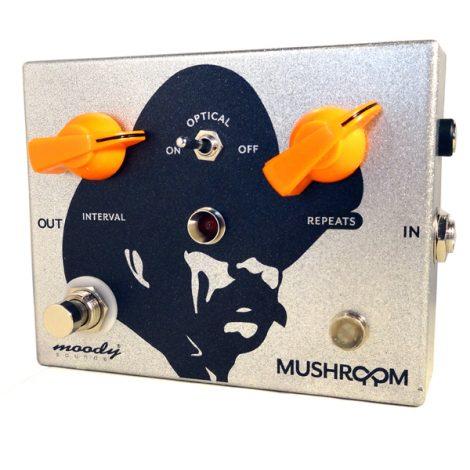 diy-gallery-mushroom-cowboy