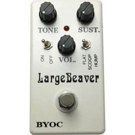largebeavertriangle